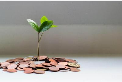plant-sprouting-out-of-a-small-pile-of-coins